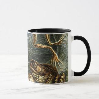 エルンスト・ヘッケル著ヴィンテージのヒキガエルおよびカエルのBatrachia マグカップ