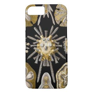 エルンスト・ヘッケル著ヴィンテージの砂ドルの雲丹 iPhone 8/7ケース