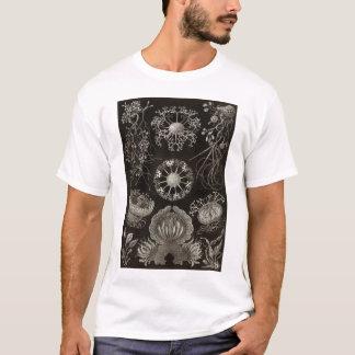 エルンスト・ヘッケル-子嚢菌 Tシャツ