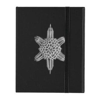 エルンスト・ヘッケル: AcanthophractaのiPad 2/3/4の場合 iPad ケース
