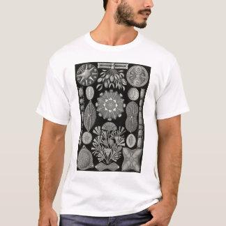 エルンスト・ヘッケル- Diatomea2 Tシャツ