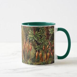 エルンスト・ヘッケル、Muscinae著ヴィンテージのコケの植物 マグカップ