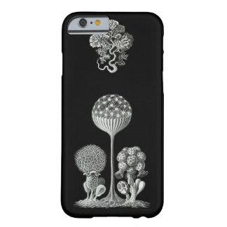エルンスト・ヘッケル: MycetozoaのiPhone6ケース Barely There iPhone 6 ケース