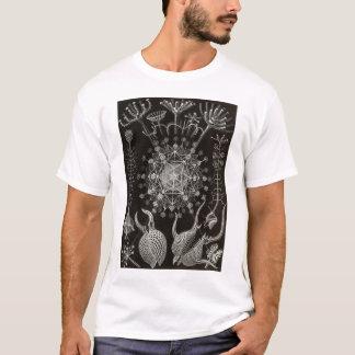 エルンスト・ヘッケル- Phaeodaria2 Tシャツ
