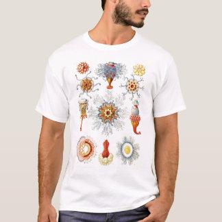 エルンスト・ヘッケル- Siphonophorae2 Tシャツ
