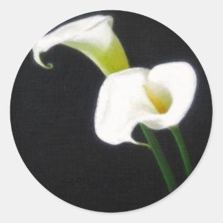 エレガントなオランダカイウユリによっては絵画的な1つが開花します ラウンドシール