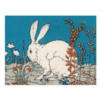 エレガントなヴィンテージの白のウサギ ポストカード
