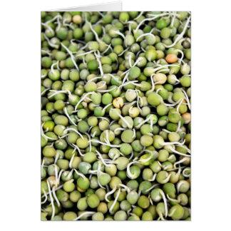 エンドウ豆の芽 グリーティングカード