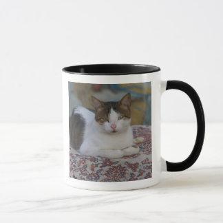 エーゲ海に沿うKusadasiのマリーナの猫、 マグカップ