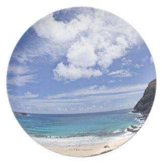 オアフ、ハワイのMakapuuのビーチ プレート