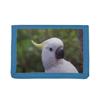 オウムの小鳥の青い三重ナイロン財布-ギフト