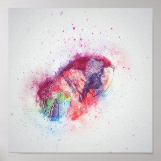オウムの水彩画ポスター ポスター