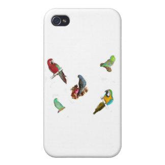 オウムの群 iPhone 4/4S ケース