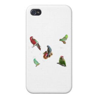 オウムの群 iPhone 4/4S CASE