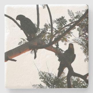 オウムの鳥の野性生物の動物の石造りのコースター ストーンコースター