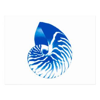 オウムガイの貝-コバルトブルーおよび白 ポストカード