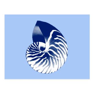 オウムガイの貝-海軍、白い及び淡いブルー ポストカード