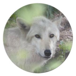 オオカミのチャーム プレート