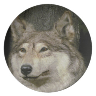 オオカミのプレート プレート