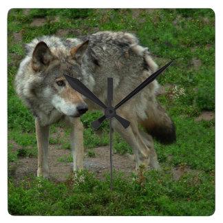 オオカミの柱時計 スクエア壁時計
