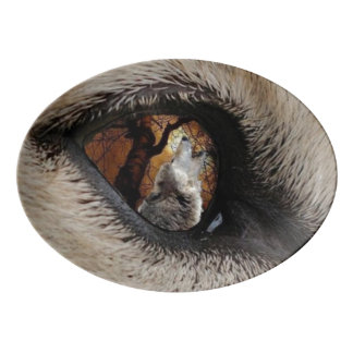 オオカミの目 磁器大皿