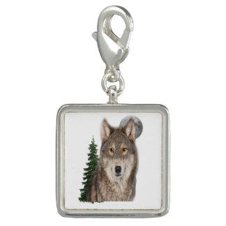 オオカミの芸術 チャーム