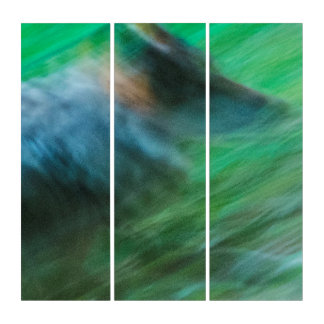 オオカミの速度のAcryliPrint®HDのトリプティクの壁の芸術 トリプティカ