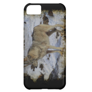 オオカミ及び雪のオオカミ恋人の野生動物の男性指導者 iPhone5Cケース
