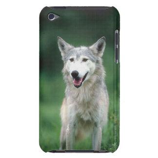 オオカミ2 Case-Mate iPod TOUCH ケース