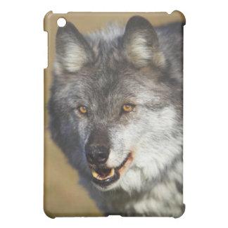 オオカミ(イヌ属ループス) iPad MINI CASE