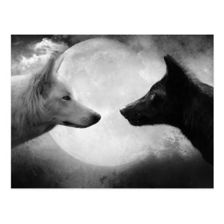 オオカミ ポストカード