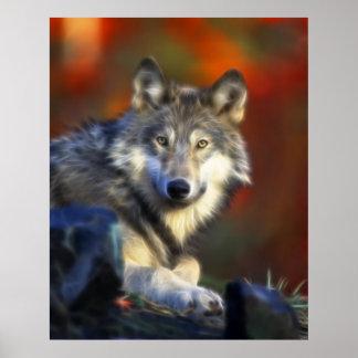 オオカミ、絶滅危ぐ種のデジタル写真 ポスター