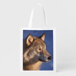 オオカミ、2のふもとの小丘のイヌ属ループス、 エコバッグ