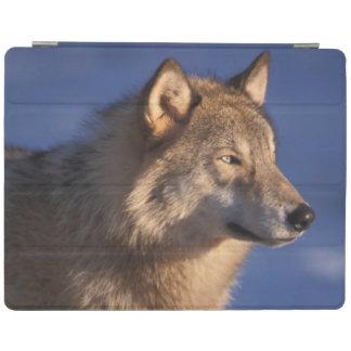 オオカミ、2のふもとの小丘のイヌ属ループス、 iPadスマートカバー