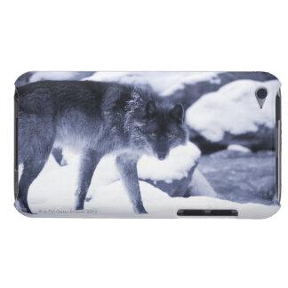オオカミ Case-Mate iPod TOUCH ケース