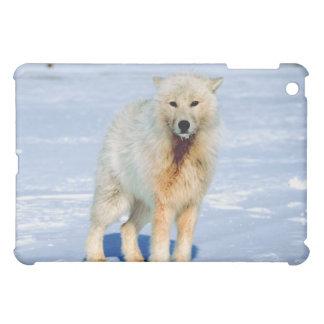 オオカミ iPad MINIケース