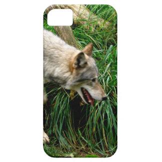 オオカミ iPhone SE/5/5s ケース