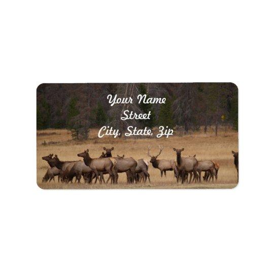 オオシカの群れの住所ステッカー ラベル