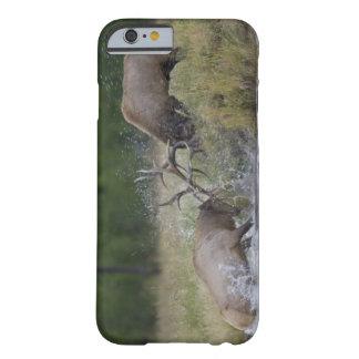 オオシカの闘牛、イエローストーンNP、ワイオミング BARELY THERE iPhone 6 ケース