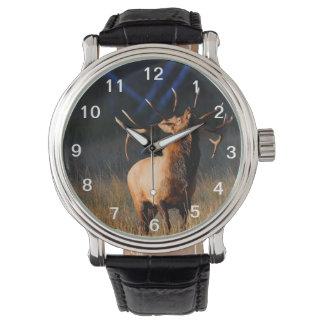 オオシカ 腕時計