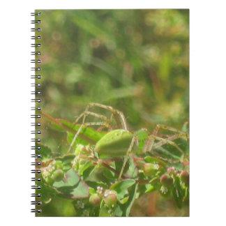 オオヤマネコのくも ノートブック