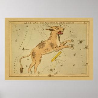 オオヤマネコ-ヴィンテージの天文星図のイメージ ポスター