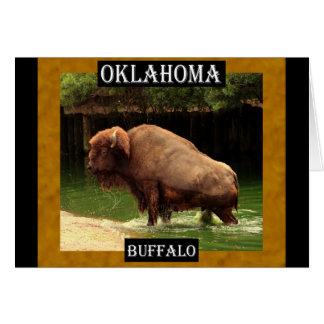 オクラホマのバッファロー(カンザス、オクラホマ、ワイオミング) カード