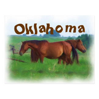 オクラホマの馬2 ポストカード