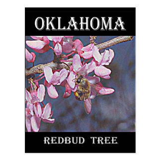 オクラホマRedbudおよび蜜蜂 ポストカード