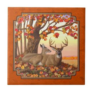 オジロ鹿シカのカエデの木の秋のオレンジ タイル