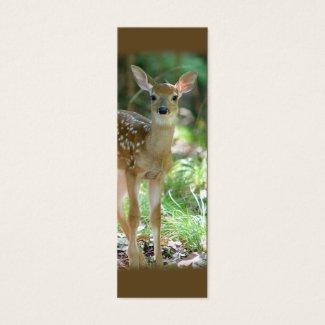 オジロ鹿シカの子鹿の小型しおり/ profilecard