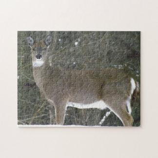 オジロ鹿シカ、ギフト用の箱が付いている11x14写真のパズル ジグソーパズル