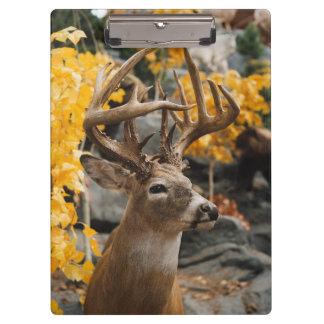 オジロ鹿シカ クリップボード