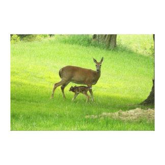 オジロ鹿シカ(雌ジカ)および子鹿 キャンバスプリント